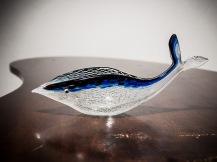 Dino Martens reticello pesce